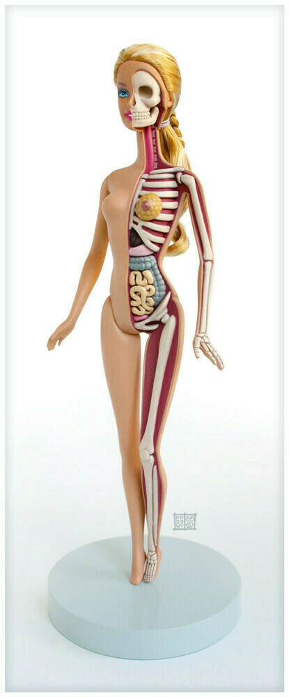 Barbie by Jason Freeny